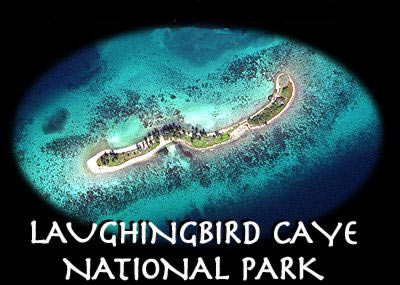 laughing bird caye aerial