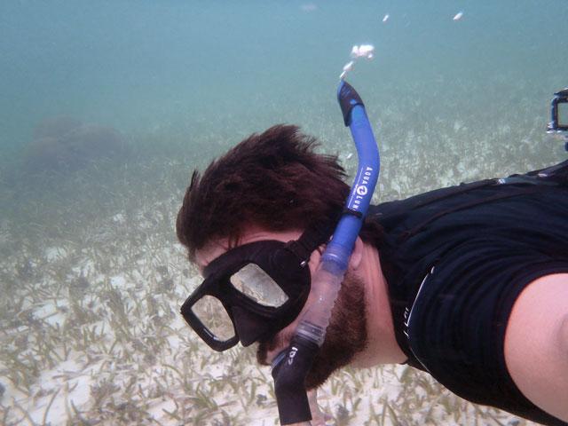 Turtle Grass Chabil Mar Resort Belize