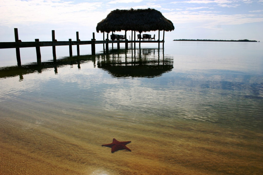 Chabil Mar Belize Resort Starfish and Pier