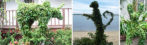 topiaries in belize