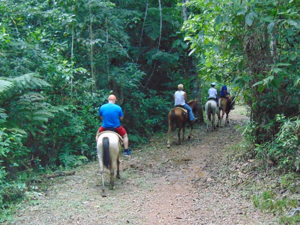 horsebackridingbelizetours