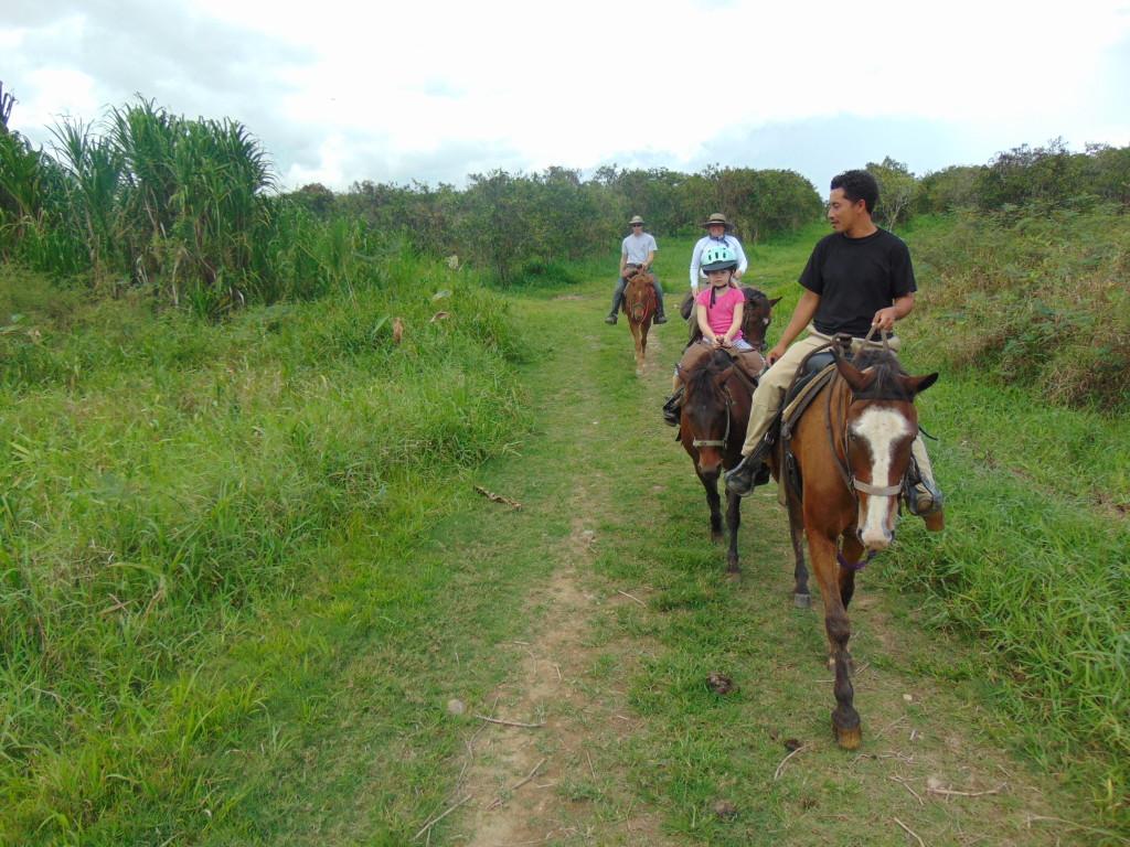 horsebackridinginbelize