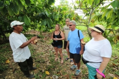 Chocolate and Spice Farm Tours