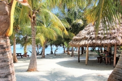 A Sailing Day to Moho Caye