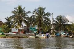 Monkey River Town