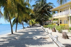 Scenes from Placencia Village - The Path to Yoli's Beach Bar