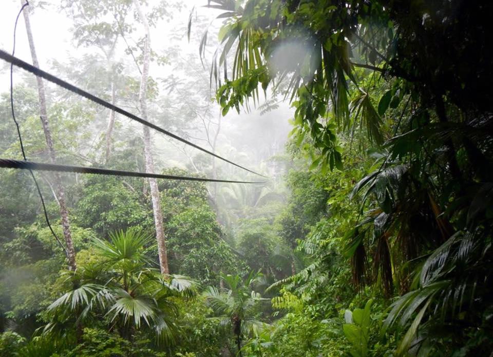 Belize Zip Line Tours